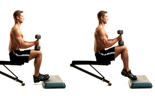 Image result for Seated Calf Raises