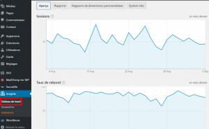 wordpress google analytics monsterinsights screenshot