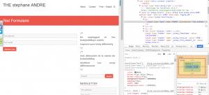 mailchimp for wordpress plugin screenshot