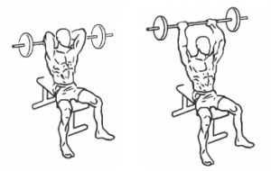 Seated EZ Bar Triceps Extensions