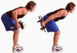 Standing Bent Over One Arm Dumbbell Triceps Extension