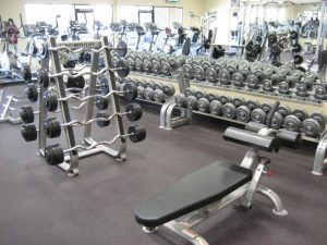 free wieghts gym