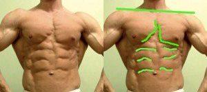 asymmetircal body