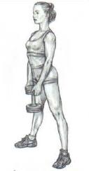 dumbbell sumo squat