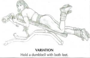 lying leg curls anatomy alternative