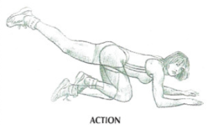 floor hip extension