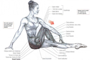 stretching glutes