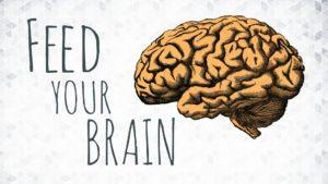 feed brain