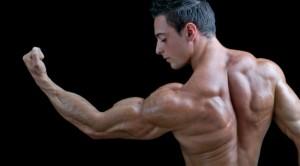 arm big