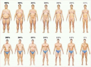lose bodyfat