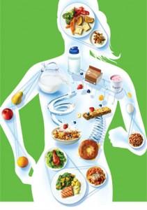 body nutrition