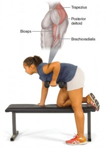 shoulder exercice row