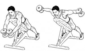 Dumbell Reverse Flyes