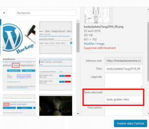 wordpress texte alternatif