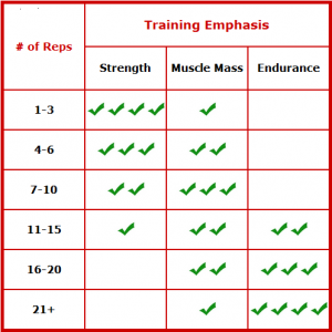 exercice sets reps