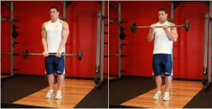 close grip barbell curls