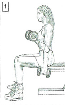 dumbbell curl anatomy