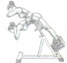 back extension incline bench