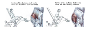 seated machine hip abductions variations torso forward